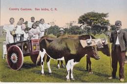 Post Card :  San Isidoro   (Costa Rica) Contry Customs  Carreta De Bueyes   Oxcart     Published By Gomez Miralles - Costa Rica