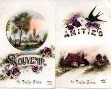 2 Cpa Souvenir Et Amitiés De FEXHE-SLINS  (Ham Sur Heure-Nalinnes - Ham-sur-Heure-Nalinnes