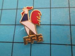 Pin513e Pin's Pins / Rare Et De Belle Qualité !! SPORTS / COQ TRICOLORE FFG FEDERATION FRANCAISE DE GYMNASTIQUE - Gymnastics
