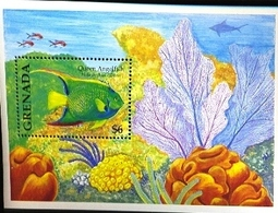 GRENADA   2358  MINT NEVER HINGED SOUVENIR SHEET OF FISH-MARINE LIFE  #   296-1  ( - Fische
