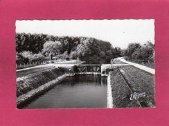 51 Marne, Conflans Sur Seine, L'Ecluse Sur Le Canal, Canal De Dérivation De Bernières, (E. Mignon) - Sonstige Gemeinden