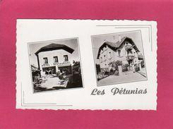 74 Haute Savoie, Annecy, Les Pétunias, Hôtel, Restaurant, Pension, (G. Mouchet) - Annecy