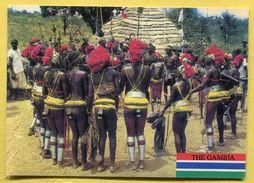 The GAMBIA - Ceremony Dance - Nude, Gambiennes  En Costume De Danse - Nues - Gambia