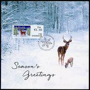 IRELAND (2017). Carte Maximum Card - ATM - Reindeer With Christmas Lights / Renne, Reno, Ren - Cartoline Maximum