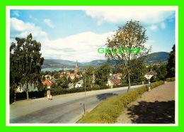 LILLEHAMMER, NORVÈGE - ANIMATED - FOTO, NORMANN - - Norvège