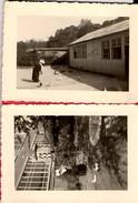 Photo FILLE De La CHARITE De SAINT-VINCENT De PAUL     30/5/1955 Kippenkwekerij - Announcements