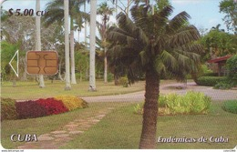 TARJETA TELEFONICA DE CUBA (ENDÉMICAS DE CUBA, PALMA CORCHO) (353) - Cuba