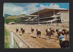 Year1973 Postcard VENEZUELA CARACAS HIPODROMO Horse Horses Races Chevaux  Z1 - Unclassified