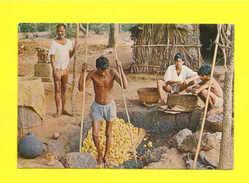 Postcard INDIA GOA 1970 Years   ETHNIC SCENE CASHEW APPLE - Postcards