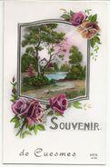 Souvenir De Cuesmes (Mons) - Mons