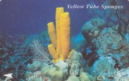 11099-SCHEDA TELEFONICA-SINGAPORE-YELLOW TUBE SPONGES-USATA - Singapore