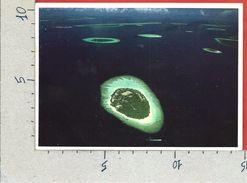 CARTOLINA VG MALDIVE - Corumba - 10 X 15 - ANN. 1988 - Maldive