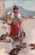 Alberto Della Valle, Italie, Venditrice Di Carne Pei Gatti, Litho (436) - Altre Illustrazioni