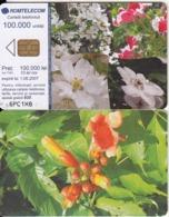 ROMANIA - Flowers, Chip ROM3, Exp.date 01/06/07, Used - Romania