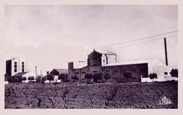 MERCIER-LACOMBE : LA BETTERAVIÈRE - SUCRERIE / BEET FIELD And SUGAR FACTORY - CARTE VRAIE PHOTO ~ 1920 - '30 (ab065) - Algeria