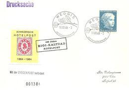 Schweiz, 1964, Drucksache, Hotelpost, Ziegenpost, Weggis Nach Chur, Siehe Scans! - Cartas