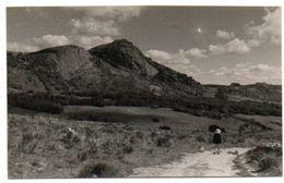 ZIMBABWE / Southern Rhodesia : UMTALI . - Zimbabwe