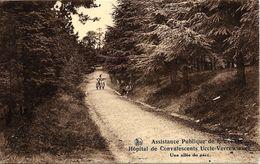 BRUXELLES (1180) : Une Allée Du Parc De L'Hôpital De Convalescents De L'Assistance Publique De Bruxelles, à Verrewinkel. - Gezondheid, Ziekenhuizen