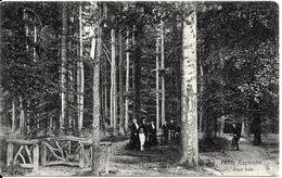 BRUXELLES (1180) : Promenade En Famille Dans Le Sous-Bois, à La Petite Espinette. CPA Rare Et Animée (cyclistes). - Santé, Hôpitaux