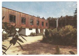 Westmalle / Malle-West - Drieboomkensberg - Provinciaal Scoutsdomein - Malle