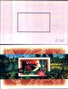85317) Australia 1997 $10 Uccello Miniatura Foglio Pacific'97 OVERPRINT Unmounted MINT - Blocchi & Foglietti