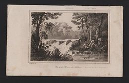 RARE ! ANTIQUE PRINT XIX Century Year 1830  AUSTRALIA French River - Unclassified