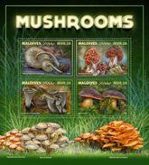 Maldives 2017 Mushroom - Funghi