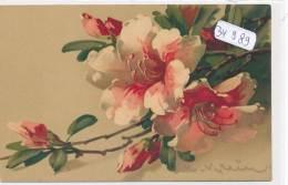 CPA  -34989- Jolie Illustration à Motif Floral Signée Catharina Klein (Expéditeur : A. Funcke Robertsau) - Klein, Catharina