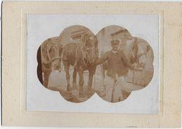 PHOTOGRAPHIE  - CHEVAUX  - VOITURIER - CARTE PHOTO - Oud (voor 1900)