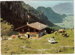 Walchsee: VW 1200 KÄFER/COX, AUSTIN 1100 - Gastwirtschaft 'Otten-Alm' - (Tirol, Österreich) - PKW