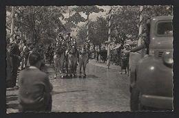 SEVILLA SEVILLE 1950ys CARROZA Horse Cart TRUCK CAR CARS SPAIN ESPAÑA ESPANA Z1 - Postcards