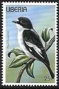 Liberia - 1996 - MNH - European Pied Flycatcher (Ficedula Hypoleuca) - Zangvogels