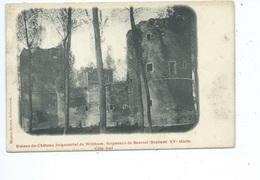 Witthem Ruines Du Château Seigneurial Seigneurs De Beersel - Beersel