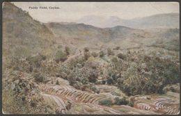 Paddy Field, Ceylon, C.1910 - Plâté Postcard - Sri Lanka (Ceylon)