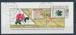 Nederland/Netherlands/Pays Bas/Niederlande 1988 Mi: Block 31 Nvph: 1414 (Gest/cancelled/obl/entw/o)(2836) - Bloks