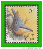 BUZIN - 2294** Sittelle Torchepot / Boomklever - H4 (groene Gom Verte) - 1985-.. Oiseaux (Buzin)