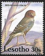 Lesotho - 1992 - MNH - Red-headed Finch (Amadina Erythrocephala) - Zangvogels