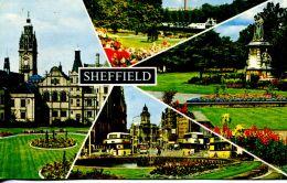 N°59389 -cpsm Shellield -multivues- - Sheffield