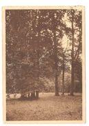 Groot-Bijgaarden - Ste Wivinaklooster - Broeders Der Christelijke Scholen - Zicht Op Het Park - Dilbeek