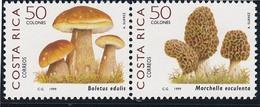 COSTA RICA 1999 - Champignons