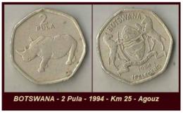 BOTSWANA - 2 Pula - 1994 - Km 25 - Agouz - Botswana