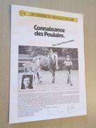 """PUB914  Dossiers Chocolat Images Poulain """"CONNAISSANCE DES POULAINS"""" Complet Avec Toutes Ses Images , - Chocolat"""