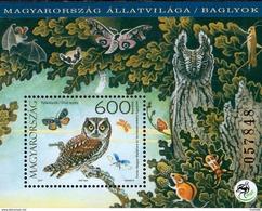 Hungary - 2017 - Owls - Mint Souvenir Sheet - Hongarije