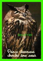 OISEAUX - HIBOU - PRINCE CHARMANT CHERCHE ÂME SOEUR - COLLECTION DU CLUB - - Oiseaux