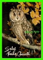 OISEAUX - SALUT VIEILLE CHOUETTE ! - COLLECTION DU CLUB - - Oiseaux
