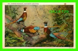 OISEAUX - CHINESE PHEASANTS, NORTHWEST GAME BIRDS - WESLEY ANDREWS CO - - Oiseaux