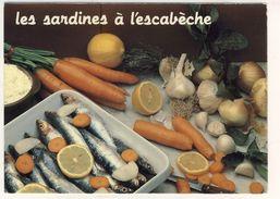 LOT  DE 34 CARTES  POSTALES  SEMI-MODERNE  RECETTE  DE CUISINE  N31 - Cartes Postales