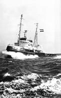 """"""" D.e.t. SCHELDE """" ( NL Nederland ) L. Smit & Co's - REMORQUEUR Tug Boat Schlepper Sleepboot Remolcador - CPSM PF - Rimorchiatori"""