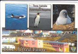T.A.A.F    BASE  ALFRED  FAURE - TAAF : Terres Australes Antarctiques Françaises