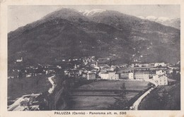 1929 Paluzza Carnia, Cartolina Viaggiata. - Italy